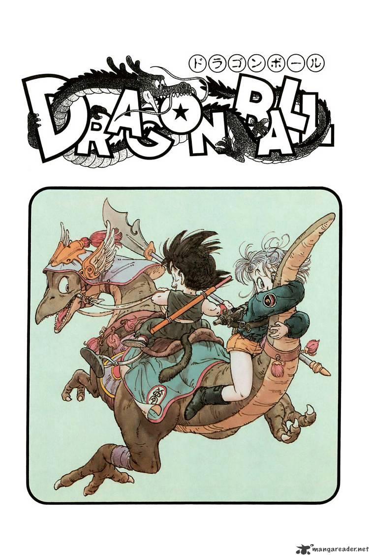 Dragon Ball Chapter 14  Online Free Manga Read Image 18