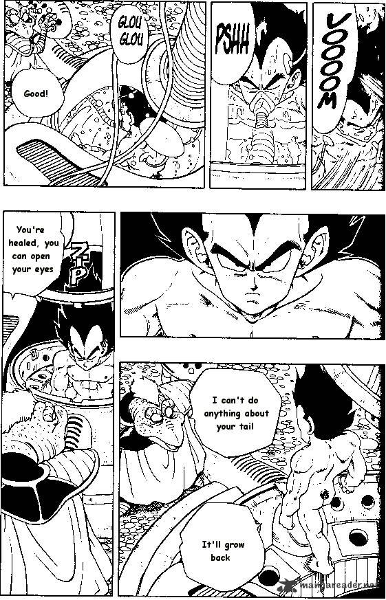Dragon Ball Chapter 246  Online Free Manga Read Image 9