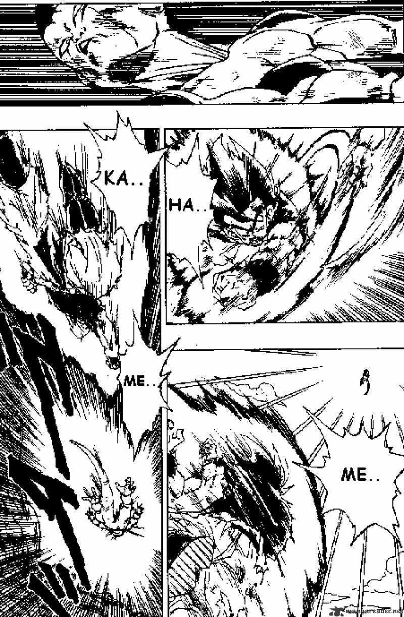 Dragon Ball Chapter 313  Online Free Manga Read Image 11