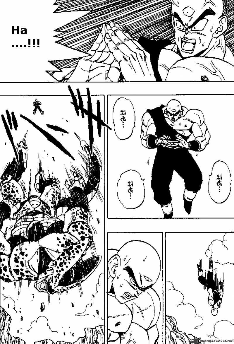 Dragon Ball Chapter 374  Online Free Manga Read Image 3