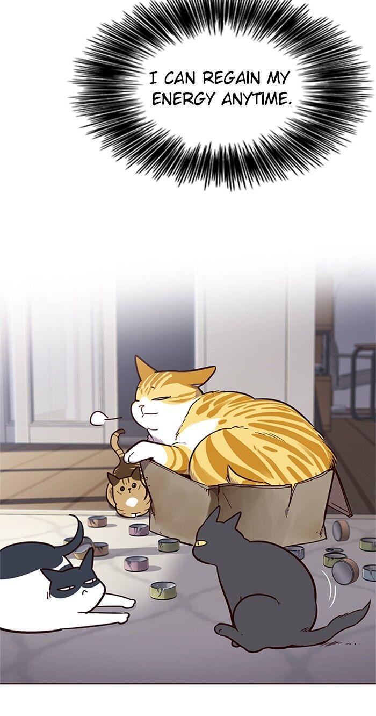 Eleceed Chapter 46  Online Free Manga Read Image 65