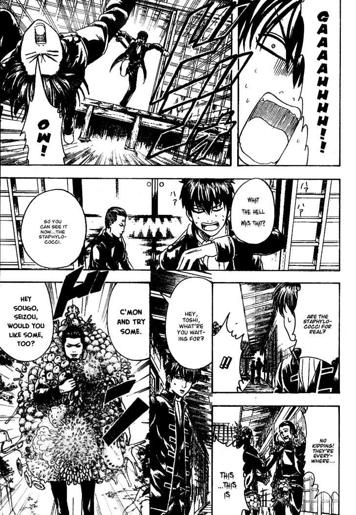 Gintama Chapter 188  Online Free Manga Read Image 11