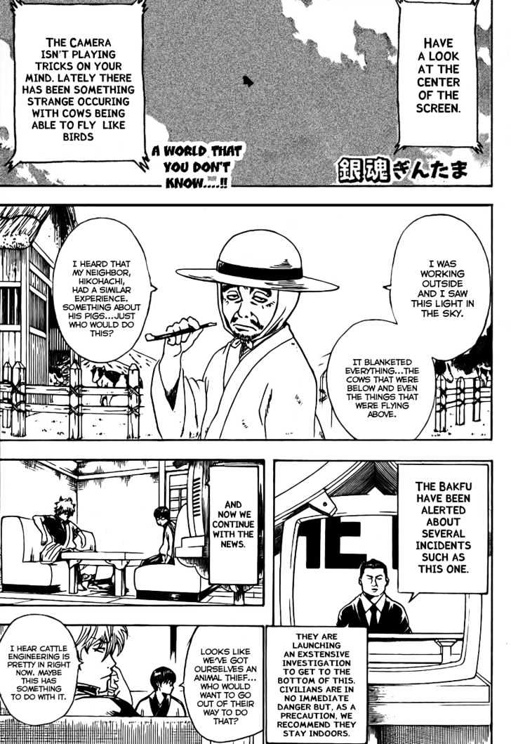 Gintama Chapter 189  Online Free Manga Read Image 3