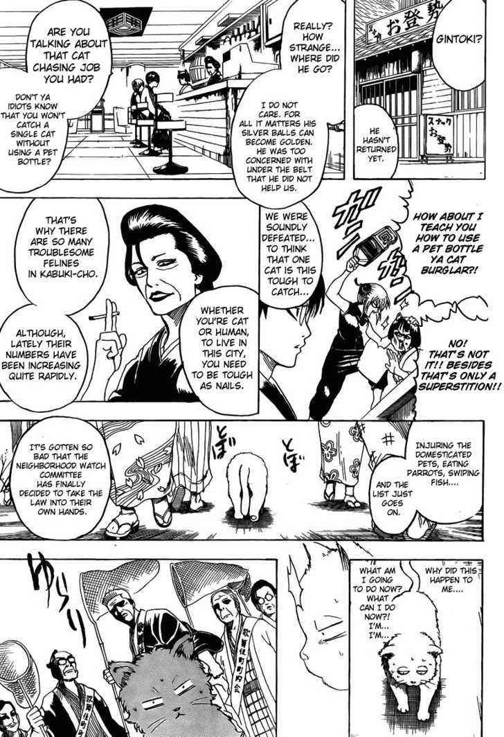 Gintama Chapter 275  Online Free Manga Read Image 7