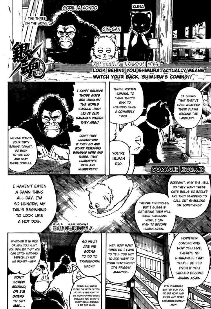 Gintama Chapter 276  Online Free Manga Read Image 2
