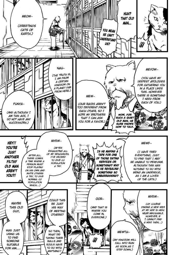 Gintama Chapter 278  Online Free Manga Read Image 15