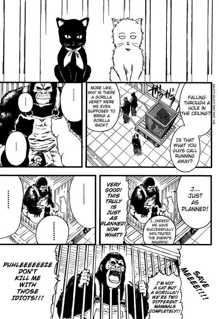 Gintama Chapter 278  Online Free Manga Read Image 7