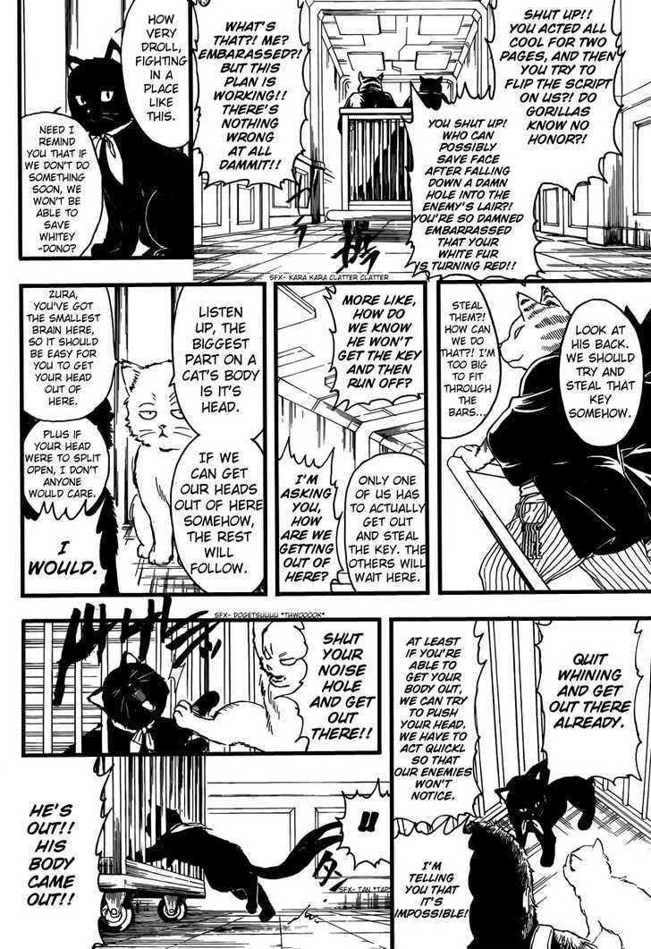Gintama Chapter 278  Online Free Manga Read Image 8