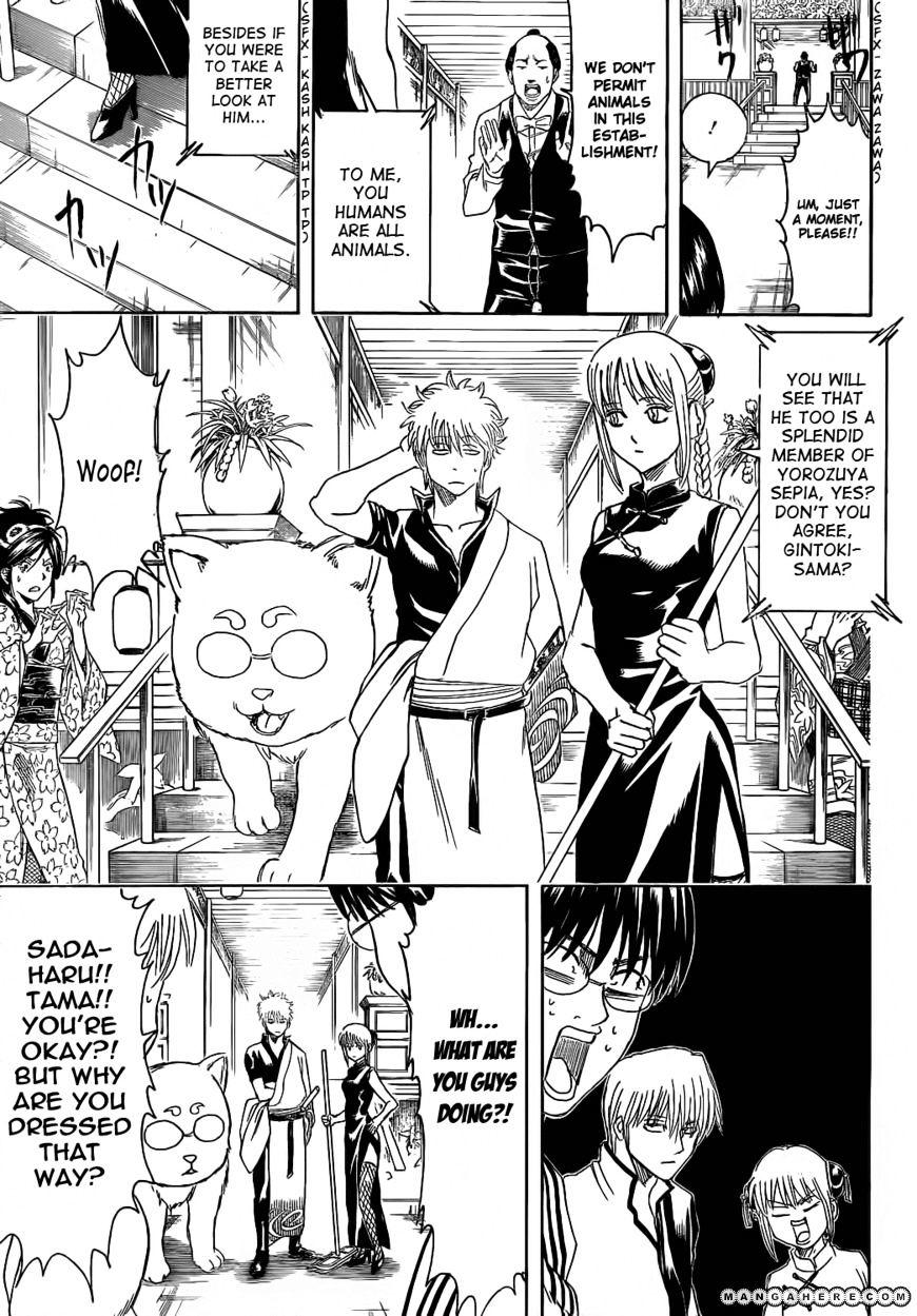 Gintama Chapter 374  Online Free Manga Read Image 9