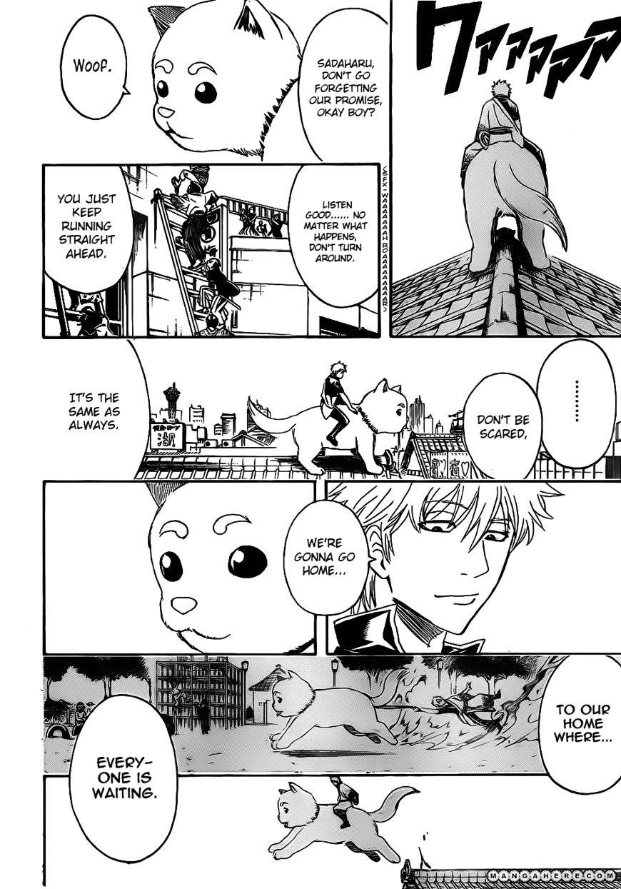 Gintama Chapter 376  Online Free Manga Read Image 15