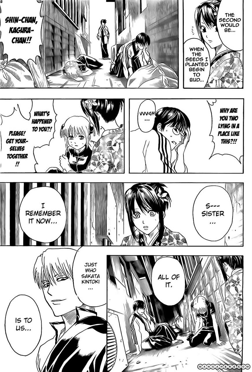 Gintama Chapter 379  Online Free Manga Read Image 3