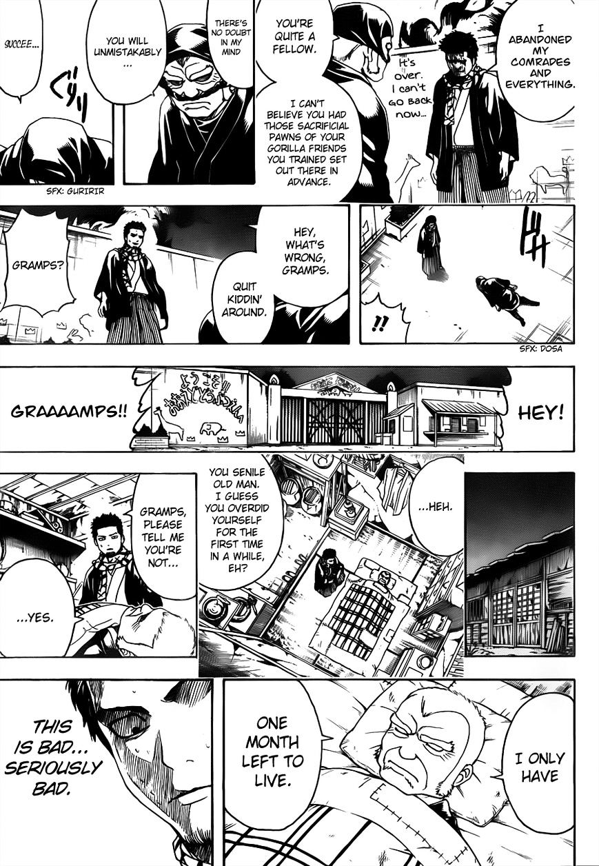 Gintama Chapter 482  Online Free Manga Read Image 11