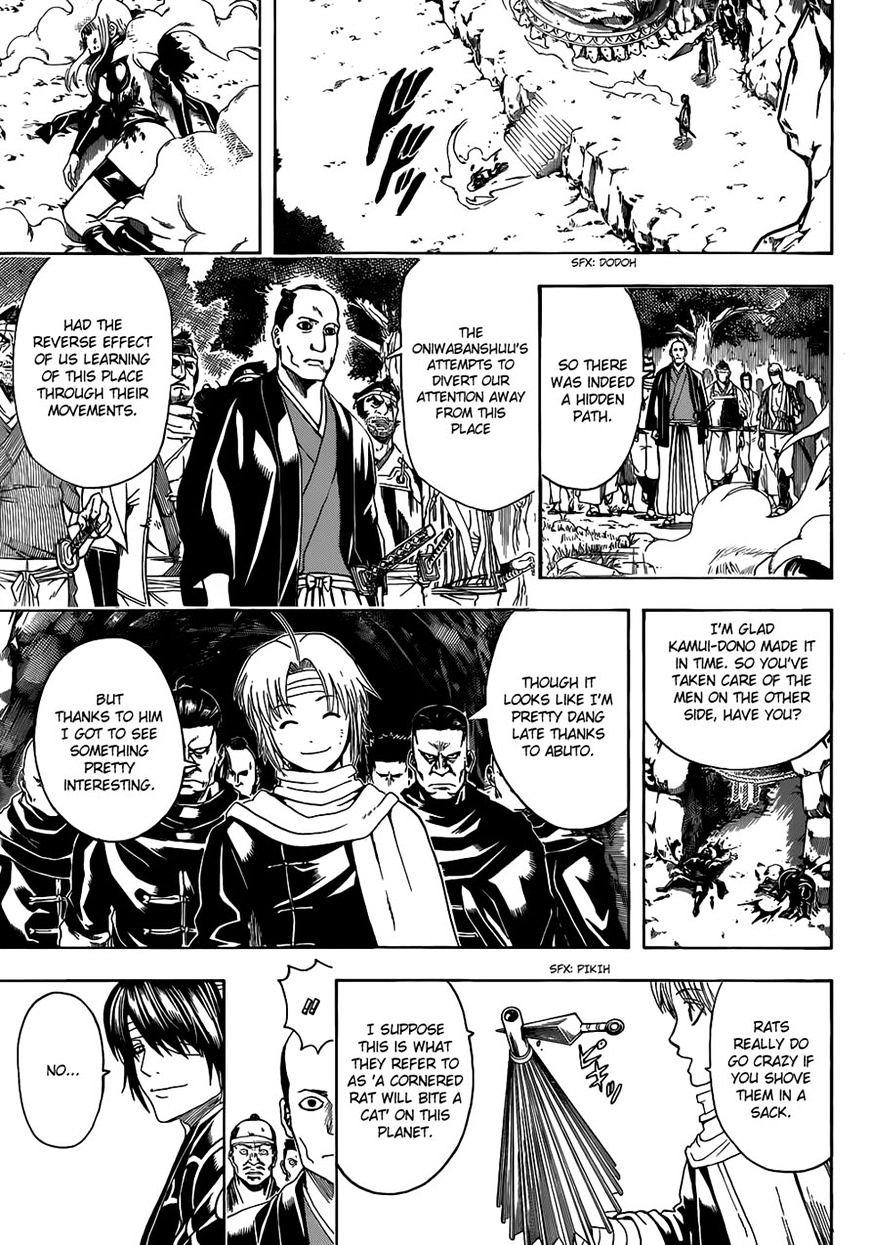 Gintama Chapter 513  Online Free Manga Read Image 13