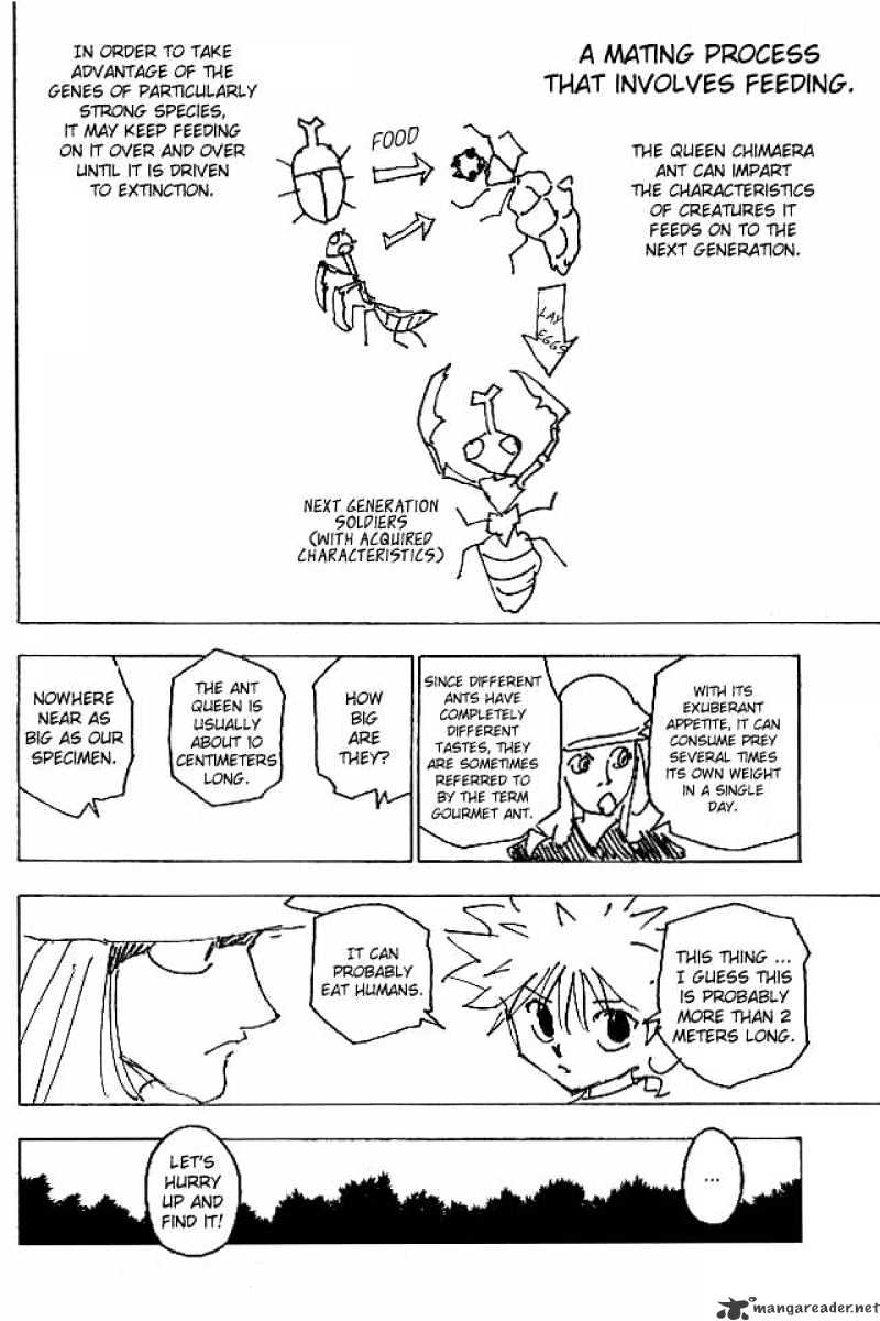 Hunter X Hunter Chapter 187  Online Free Manga Read Image 12