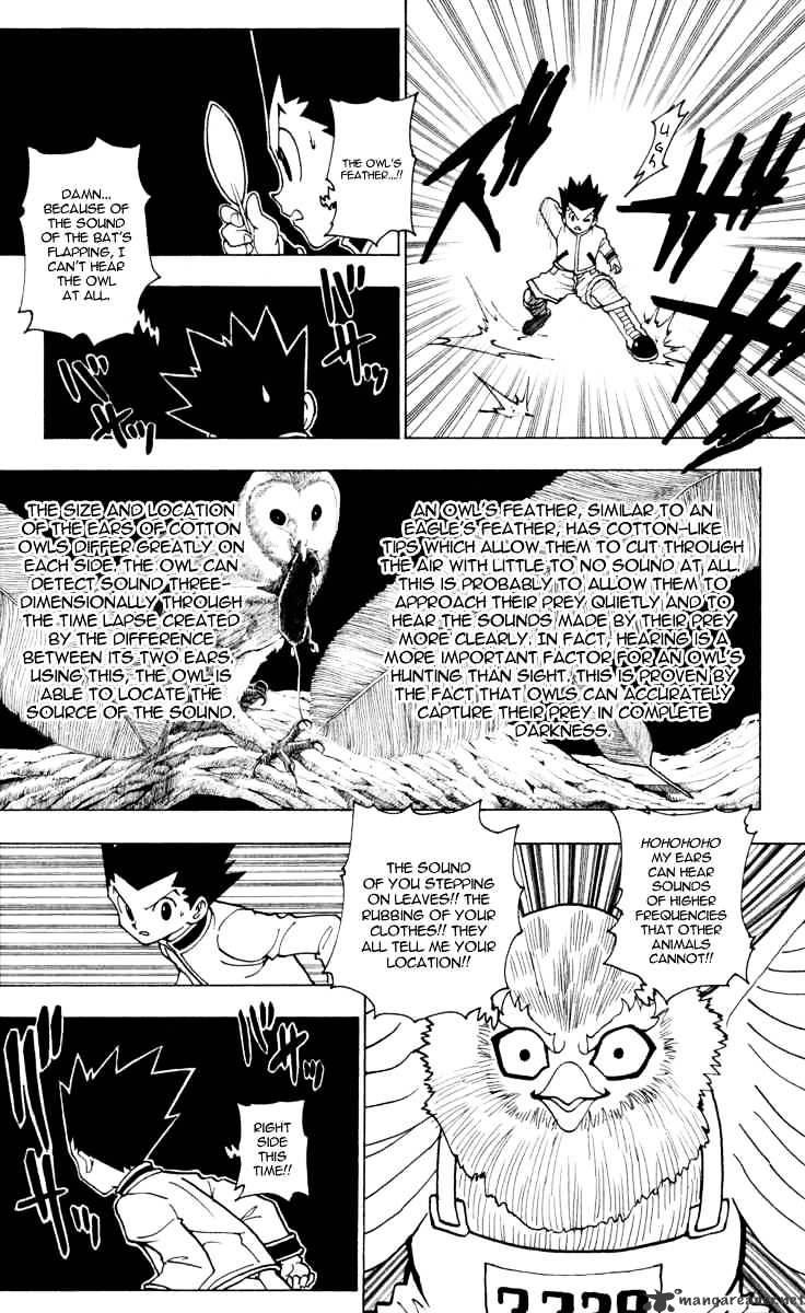 Hunter X Hunter Chapter 232  Online Free Manga Read Image 3