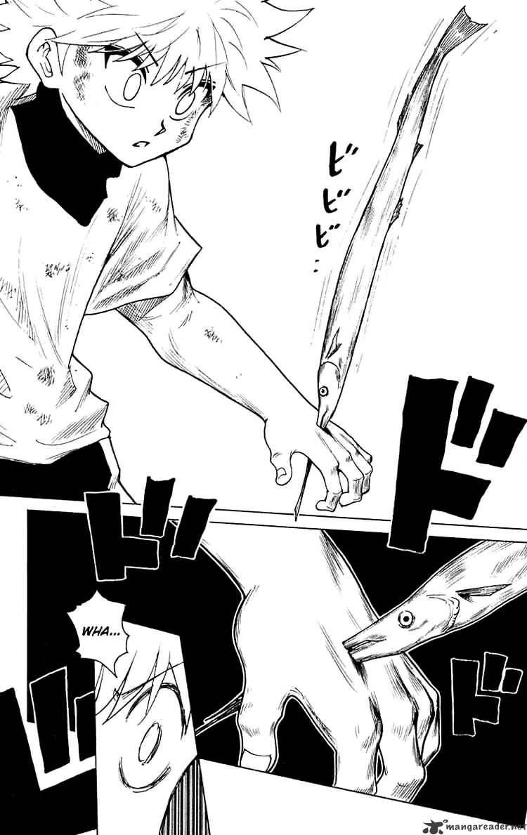 Hunter X Hunter Chapter 239  Online Free Manga Read Image 2