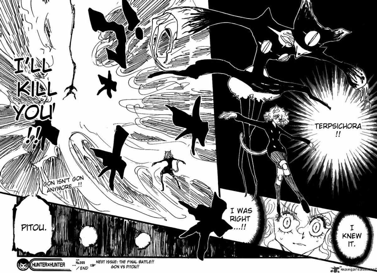 Hunter X Hunter Chapter 305  Online Free Manga Read Image 15