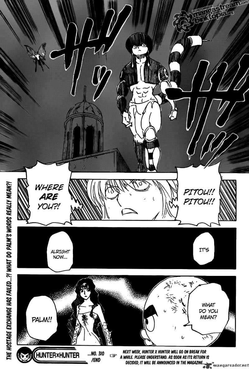 Hunter X Hunter Chapter 310  Online Free Manga Read Image 19