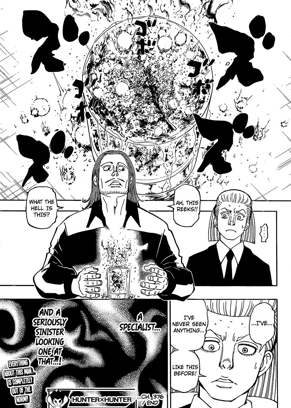 Hunter X Hunter Chapter 376  Online Free Manga Read Image 20