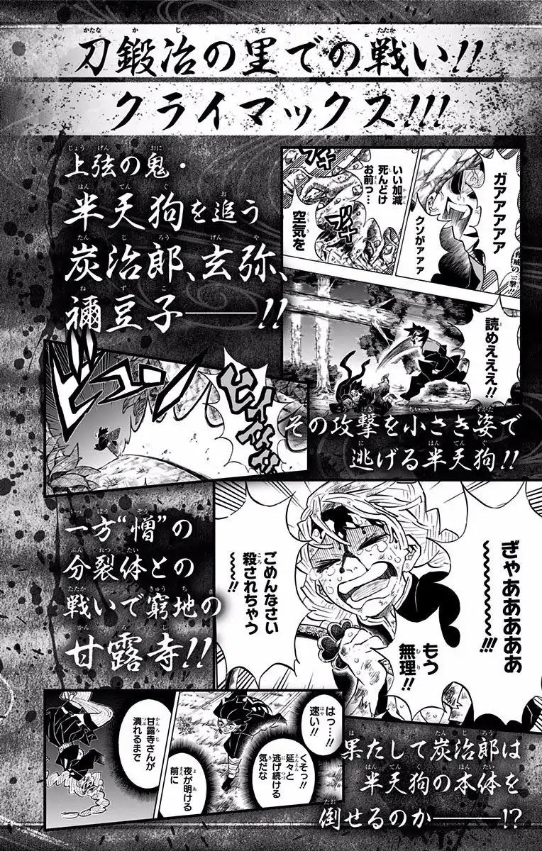Kimetsu no Yaiba Chapter 124.5  Online Free Manga Read Image 15