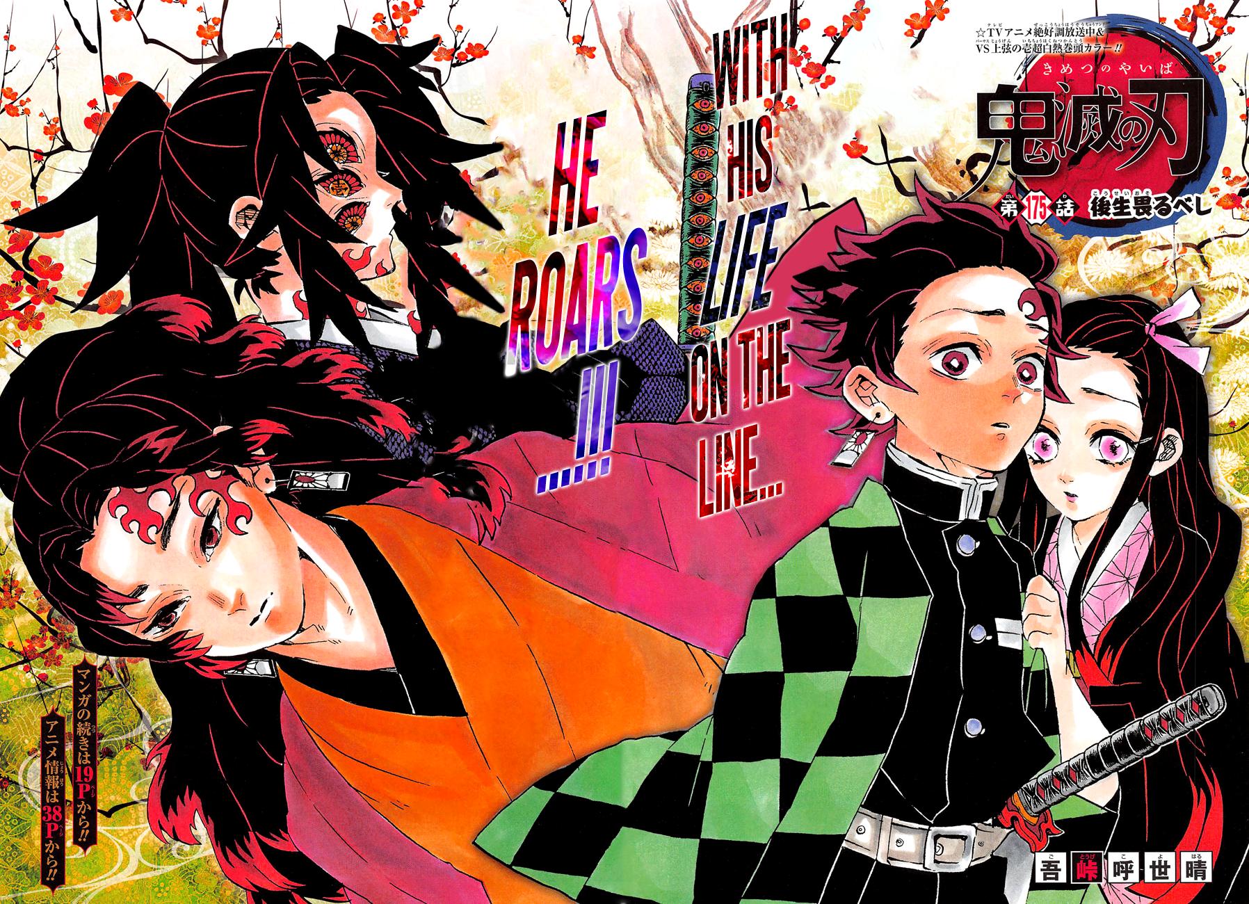 Kimetsu no Yaiba Chapter 175  Online Free Manga Read Image 3