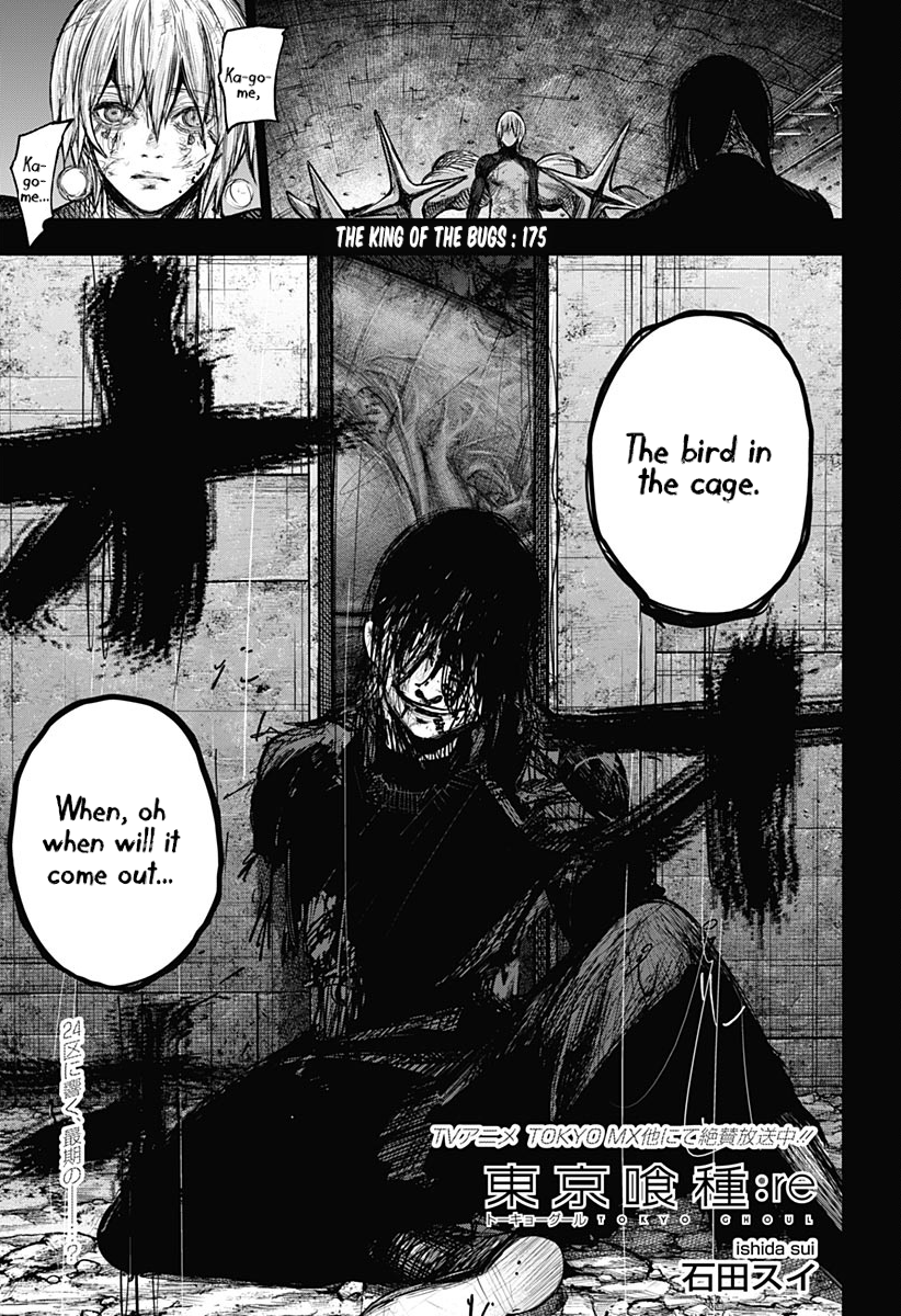 Tokyo Ghoulre Chapter 175  Online Free Manga Read Image 2