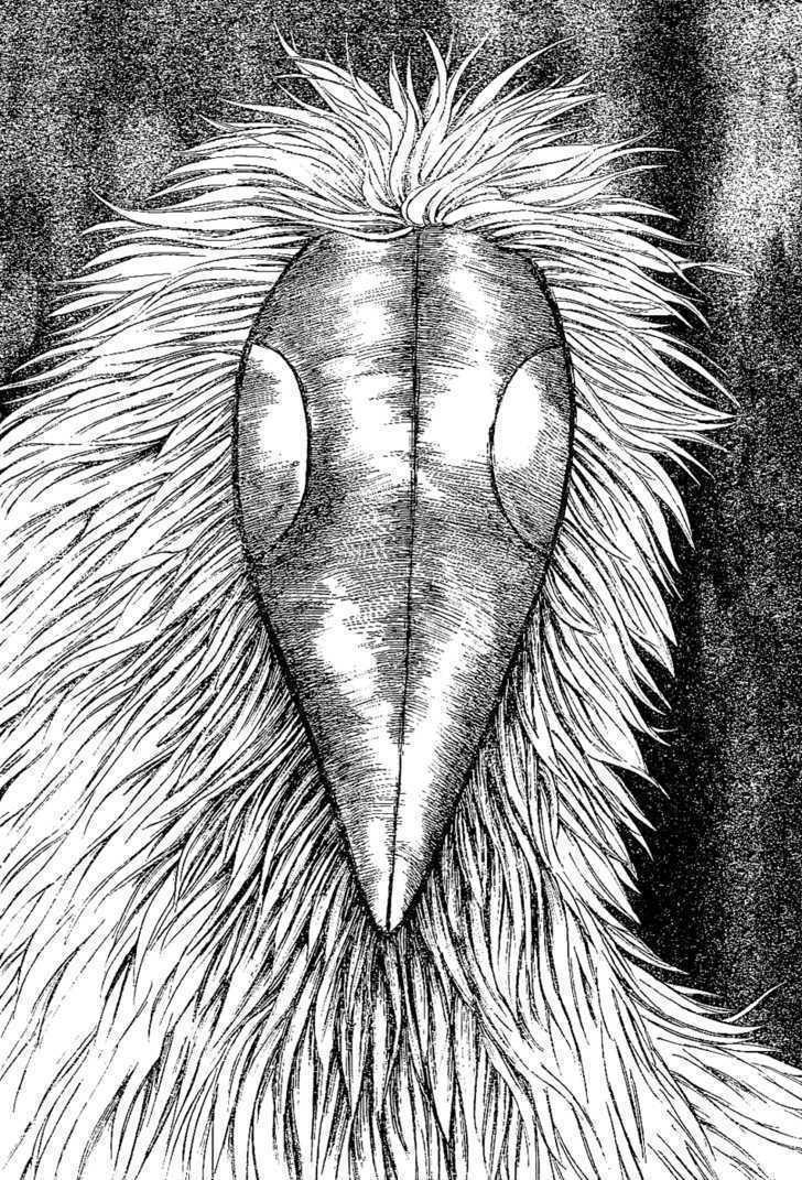 Toriko Chapter 18  Online Free Manga Read Image 4
