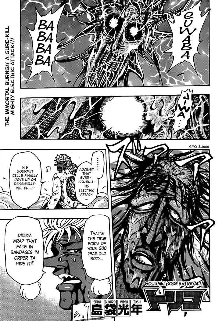 Toriko Chapter 230  Online Free Manga Read Image 1