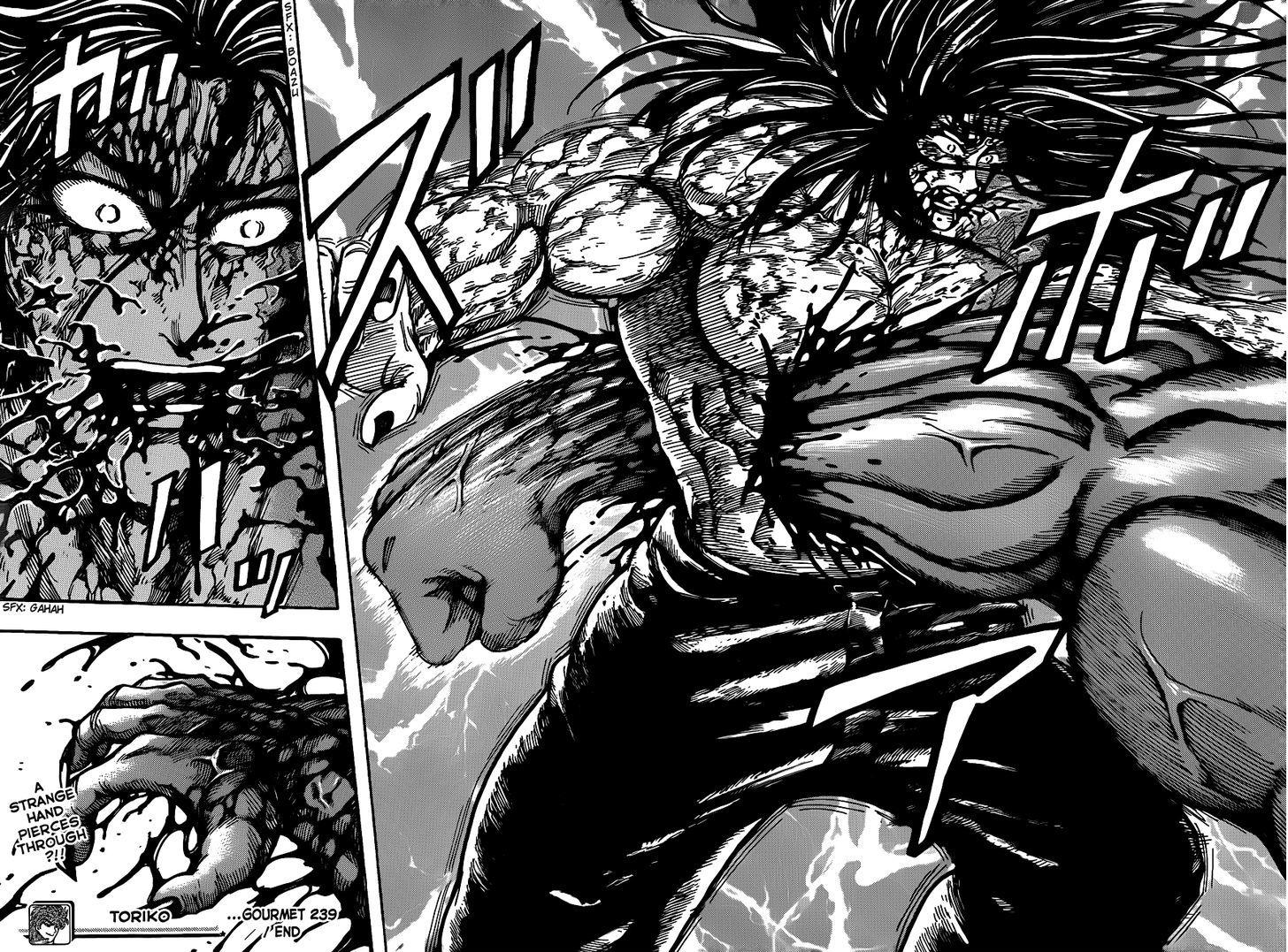 Toriko Chapter 239  Online Free Manga Read Image 18