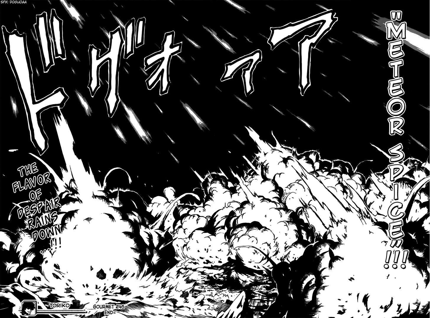 Toriko Chapter 245  Online Free Manga Read Image 17