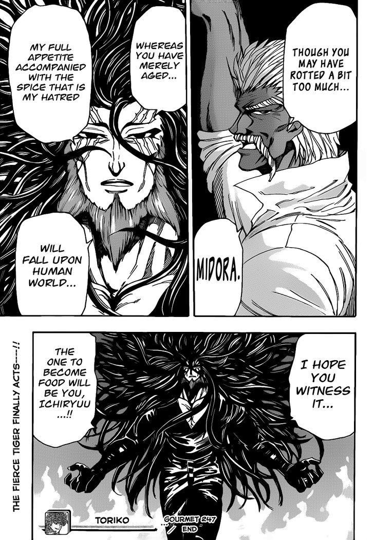 Toriko Chapter 247  Online Free Manga Read Image 17