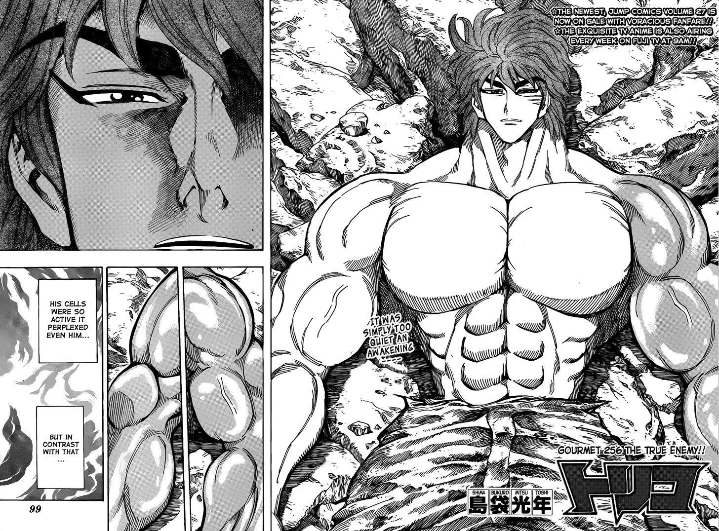 Toriko Chapter 256  Online Free Manga Read Image 4