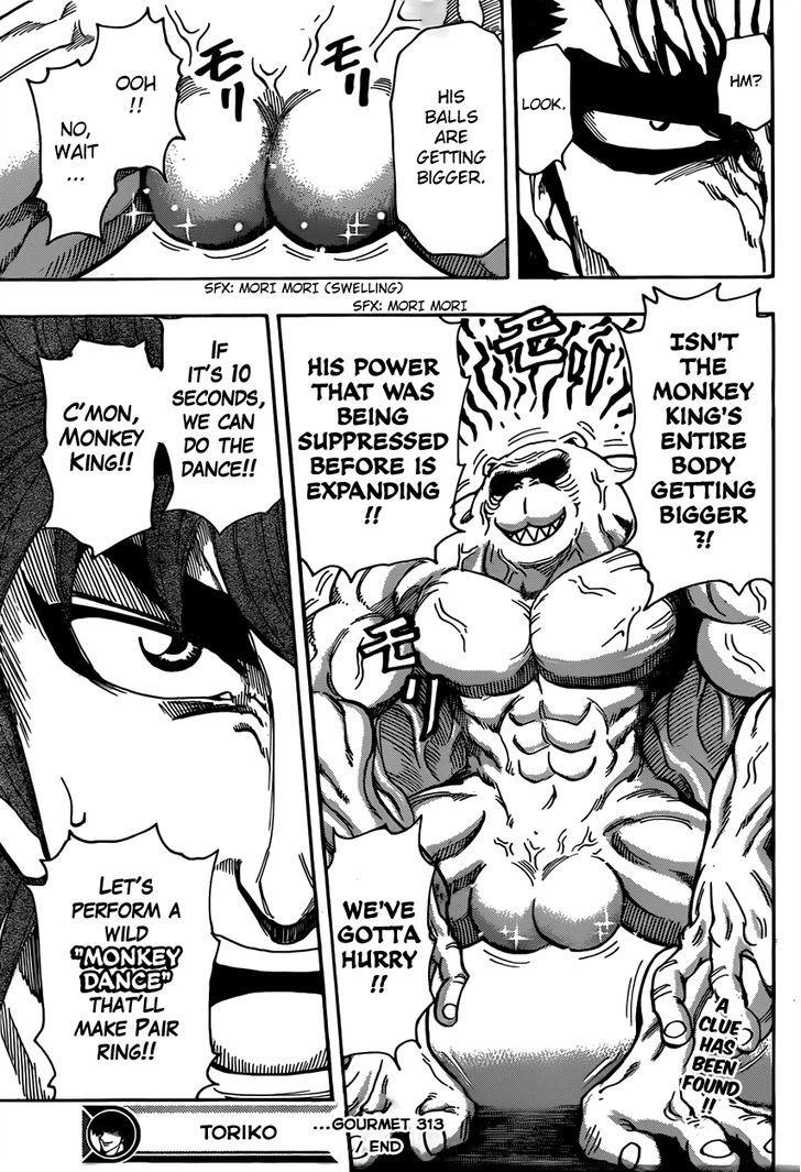 Toriko Chapter 313  Online Free Manga Read Image 18