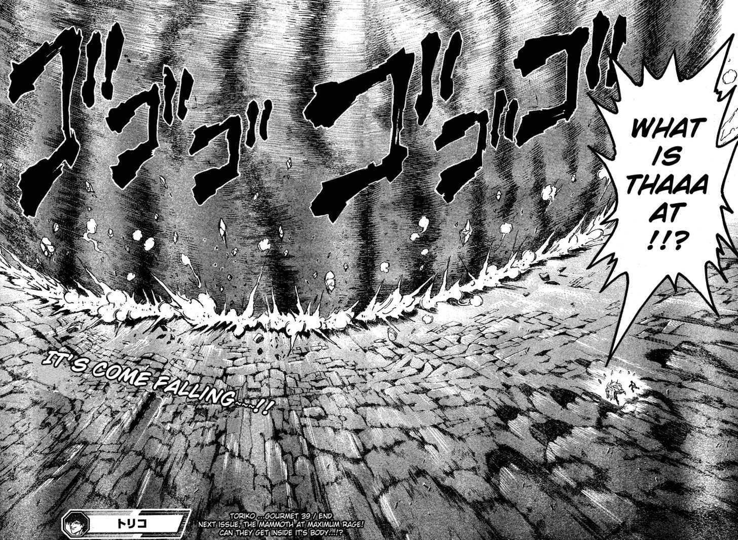 Toriko Chapter 39  Online Free Manga Read Image 17