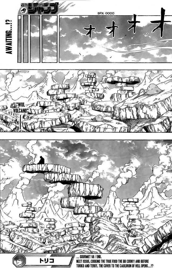 Toriko Chapter 58  Online Free Manga Read Image 20