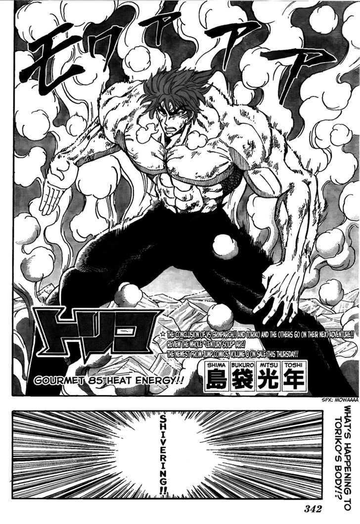 Toriko Chapter 85  Online Free Manga Read Image 2